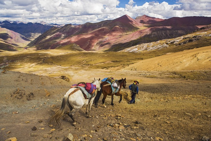 horses on pass