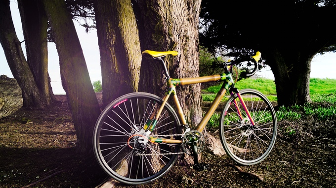 Calfee Bamboo Bike Kit