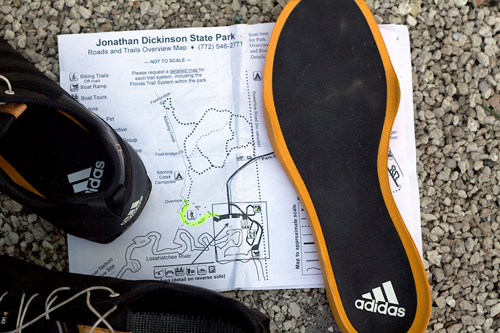 sección legumbres ancla  Review: Adidas Outdoor Trail Shoe With 'Mountain Bike' Sole | GearJunkie