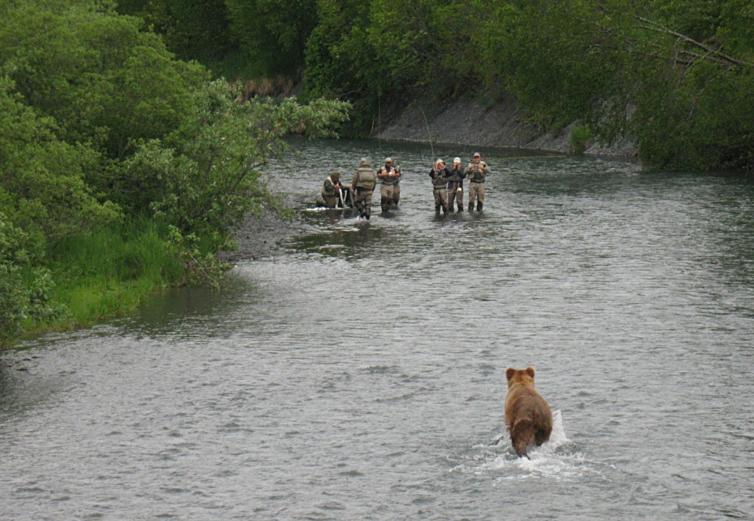 Bear Spray 101 Tips Best Practices In The Field Gearjunkie