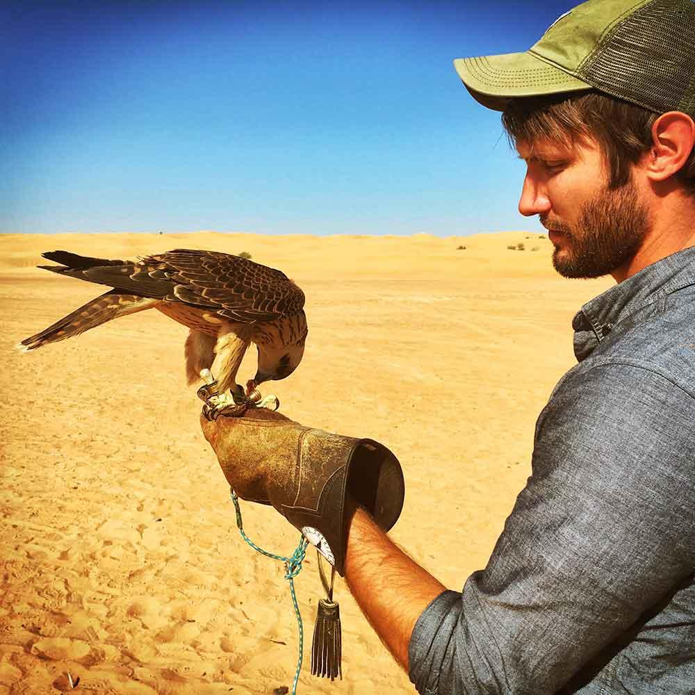 falcon-in-hand