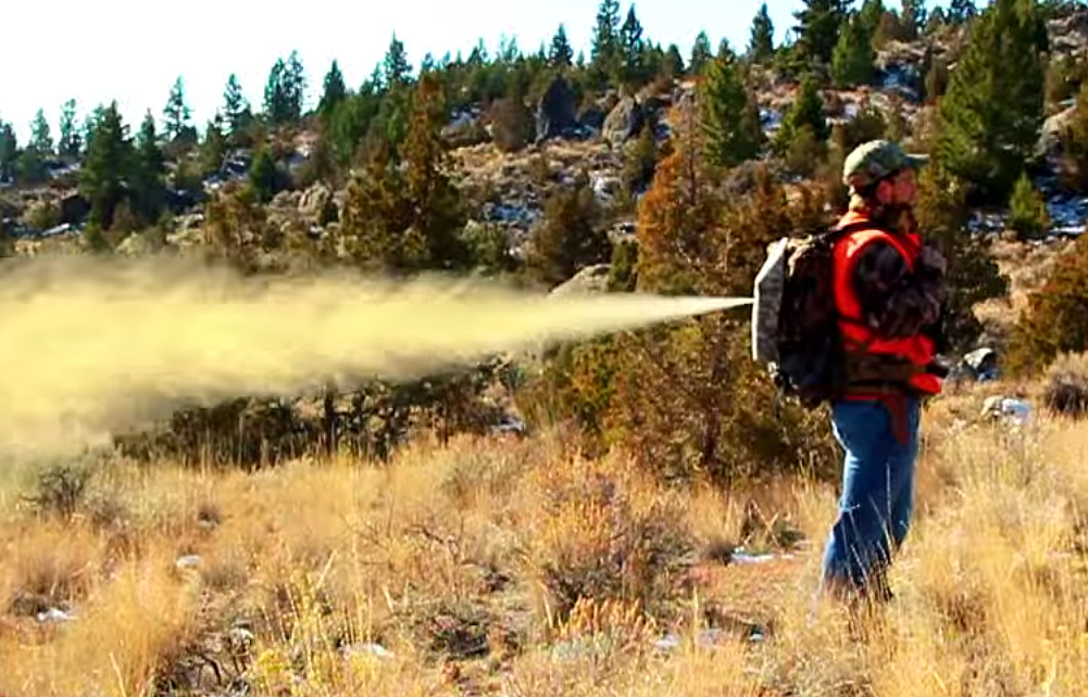 bear spray backpack