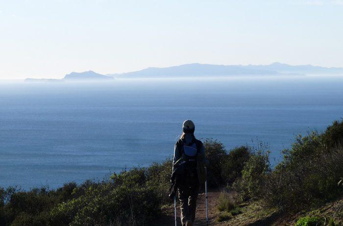 backbone trail Santa Cruz