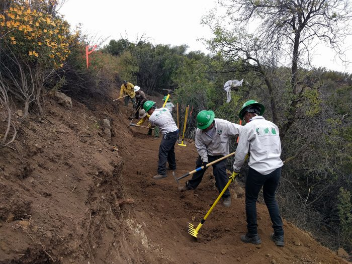 Backbone Trail volunteers