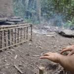 primitive technology tree bark fiber