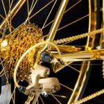 goldgenie racing bike
