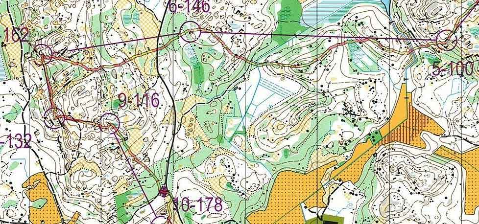 Close up: Typical orienteering map