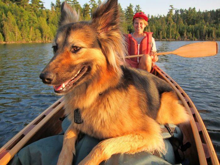 myhan dog ann raiho canoe