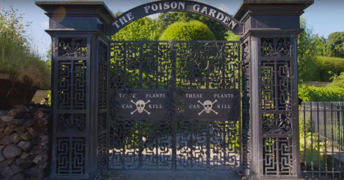 The Poison Garden England
