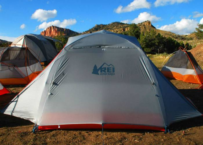 & First Look: REI Upgrades u0027Quarter Domeu0027 Tent For 2017
