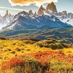 patagonia vote our planet