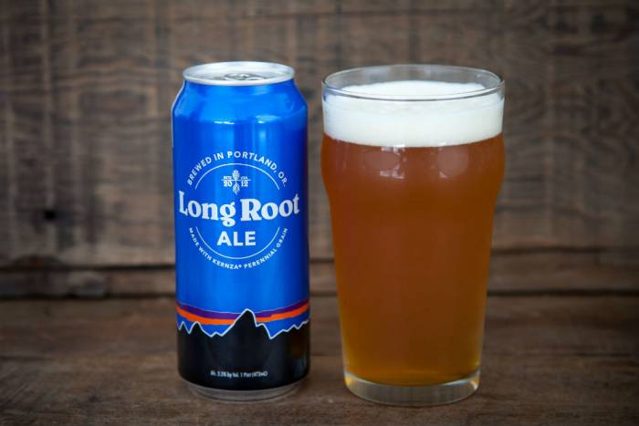 Patagonia's Long Root Ale is made from 'ancient grains'