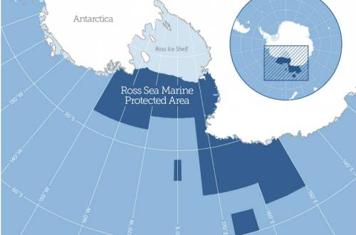 ross_sea_mpa_map-feature