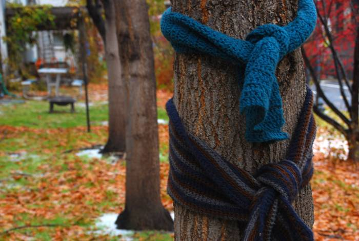 scarves tied around a tree