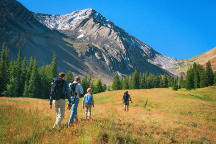hikers-in-salmon-challis-national-forest