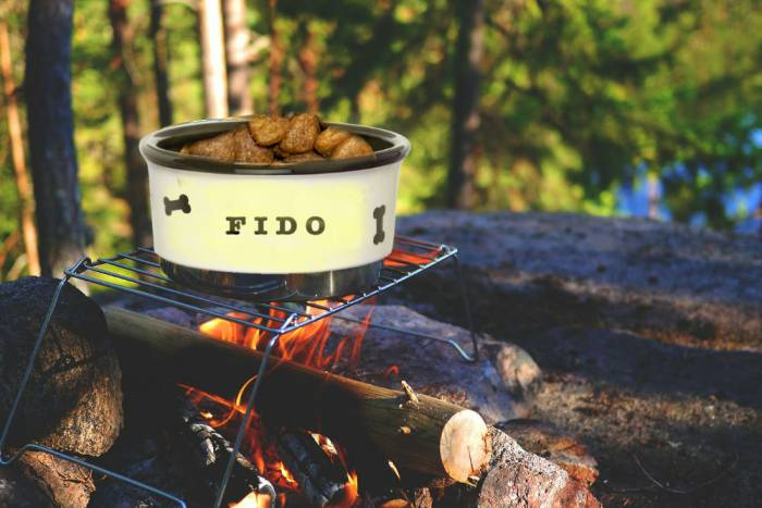 dog-food-cooking-on-campfire