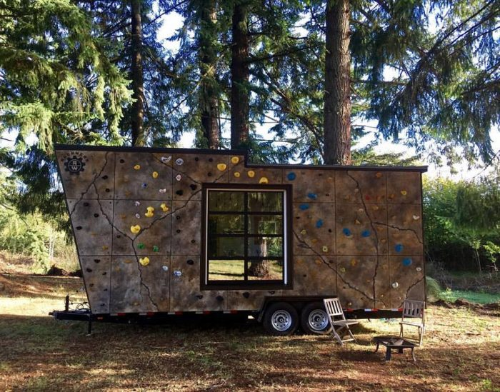 climbing-wall-tiny-home