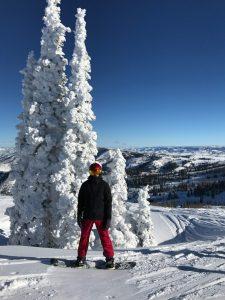 Powder Mountain Nate by snow trees