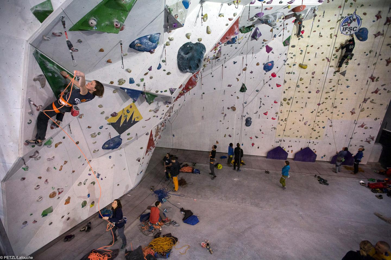 Grigri+ sharma gym wall climb