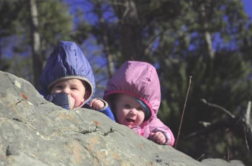a higher crawling cedar right andy kirpatrick film 1