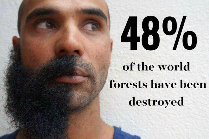 beardson stats