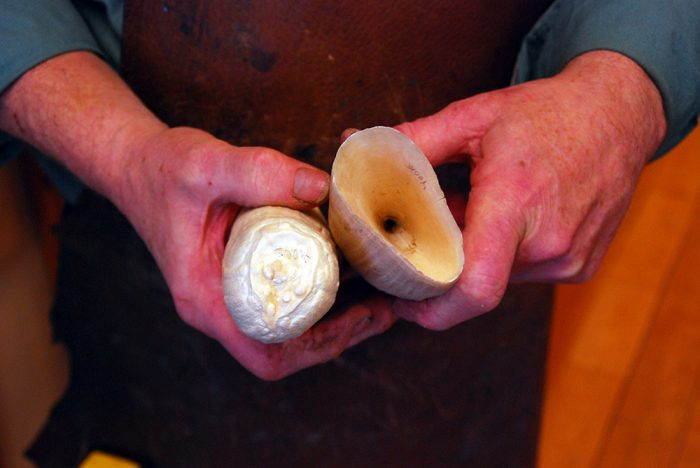 whale teeth to be made into knife handles