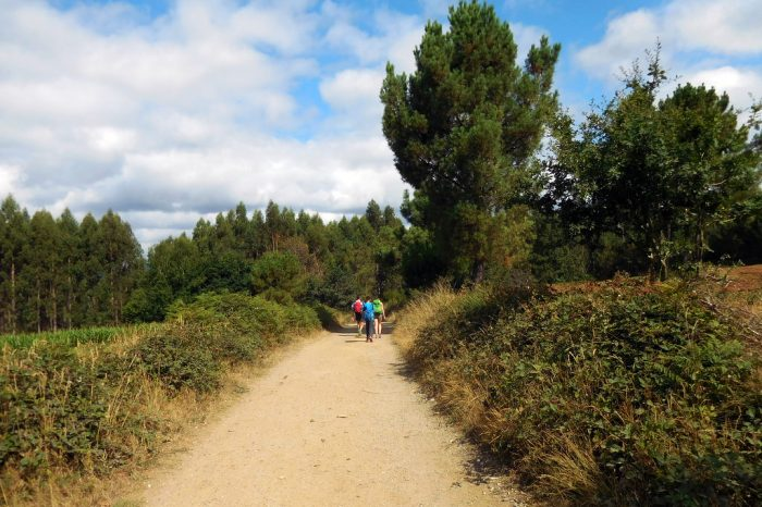 camino de santiago hiking spain's oldest trail