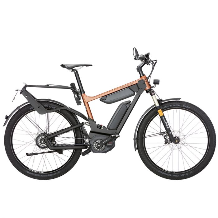 The Delite adventure ebike by Riese & Muller