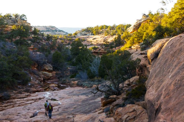 Hike, Climb, Run, MTB: 5 Adventures In Bears Ears