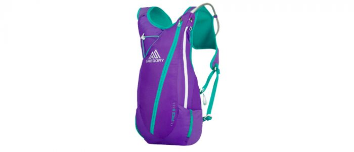 Gregory Pace 8 Hydration Pack Purple