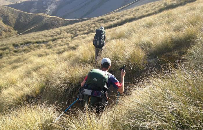 hiking te araroa new zealand