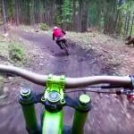 bear chase singletrack
