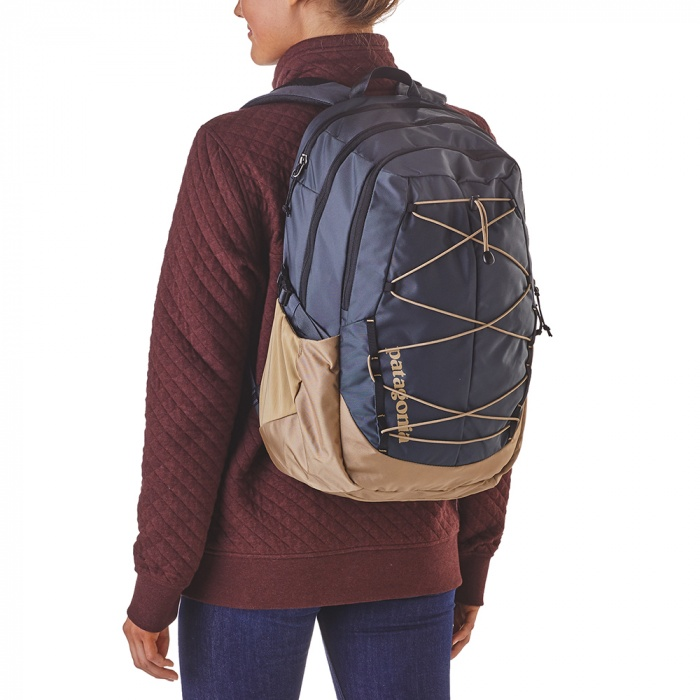 Patagonia Women's backpack