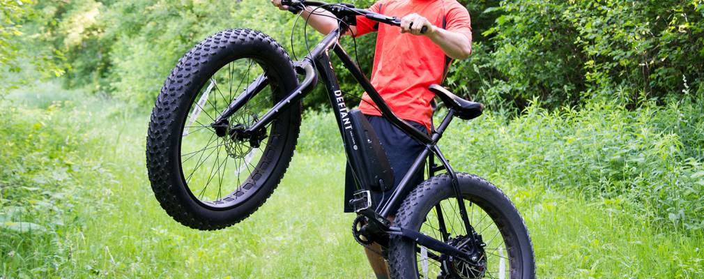 defiant 01 e fat bike electric pedal assist