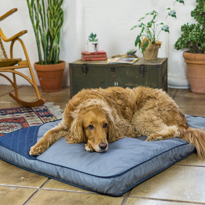toad-and-co-dog-bed