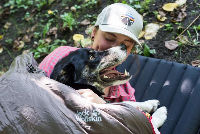 Dog In Jack Wolfskin Smoozip Sleeping Bag