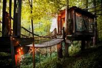 remote tree house bridge