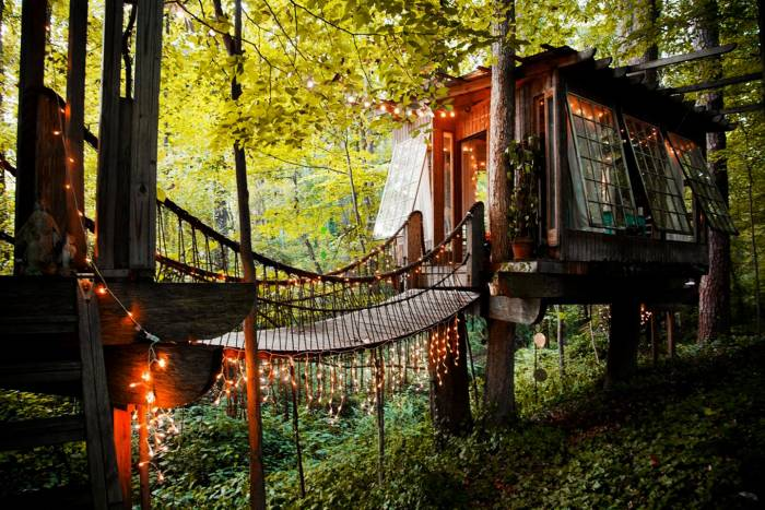 secluded-treehouse-bridge