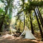 Pursuit Series Adult Summer Camp