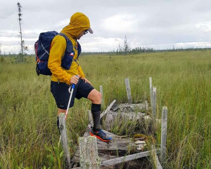 The Great Bog Walk: Red Lake Peatland Crossing