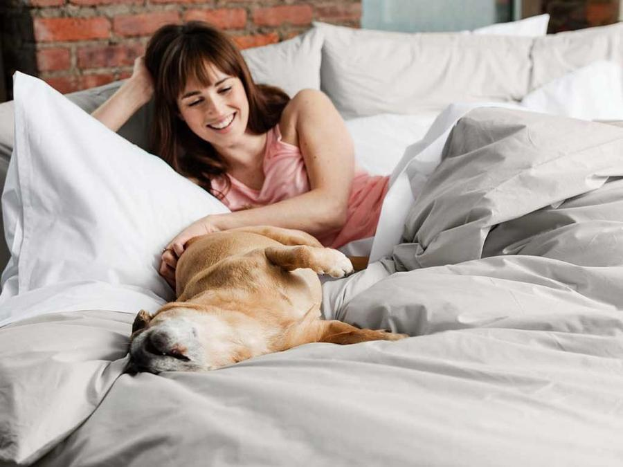 This dog knows the best sleep gear for a good night's rest.