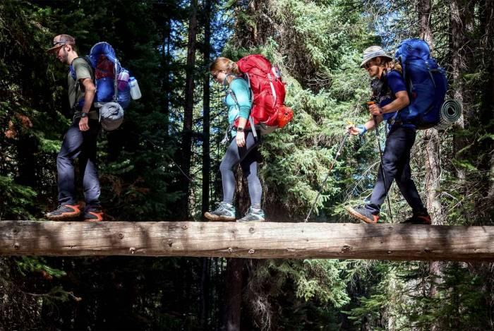 Log bridge en route to Conundrum Hot Springs review