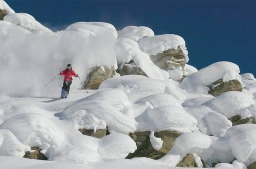 salomon tv powder skiing