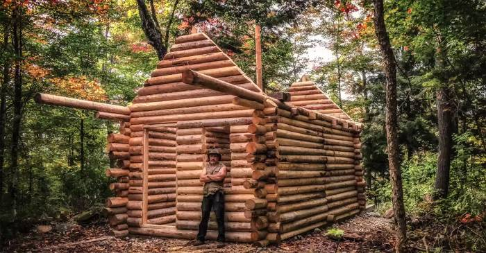 Log cabin in woods timelapse