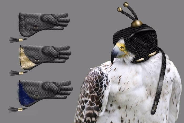 willimason wallingford falconry set