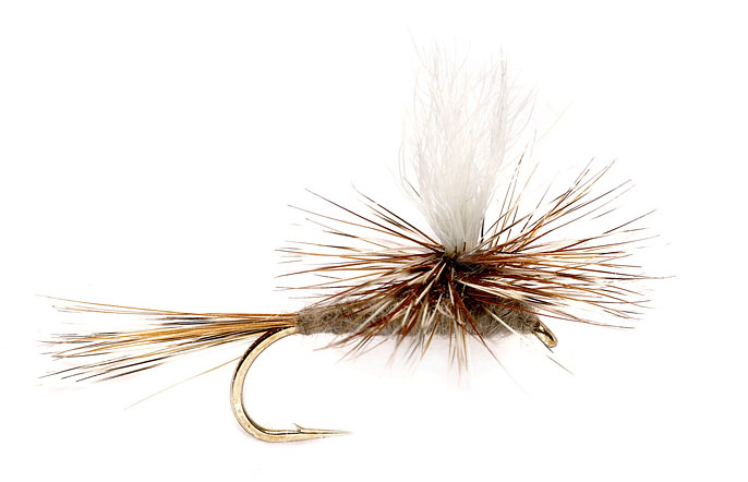 Best spring trout fly parachute adams