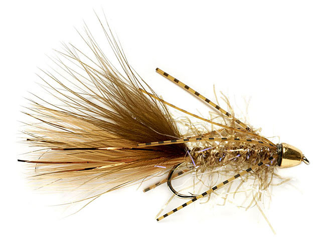 Best Flies for spring