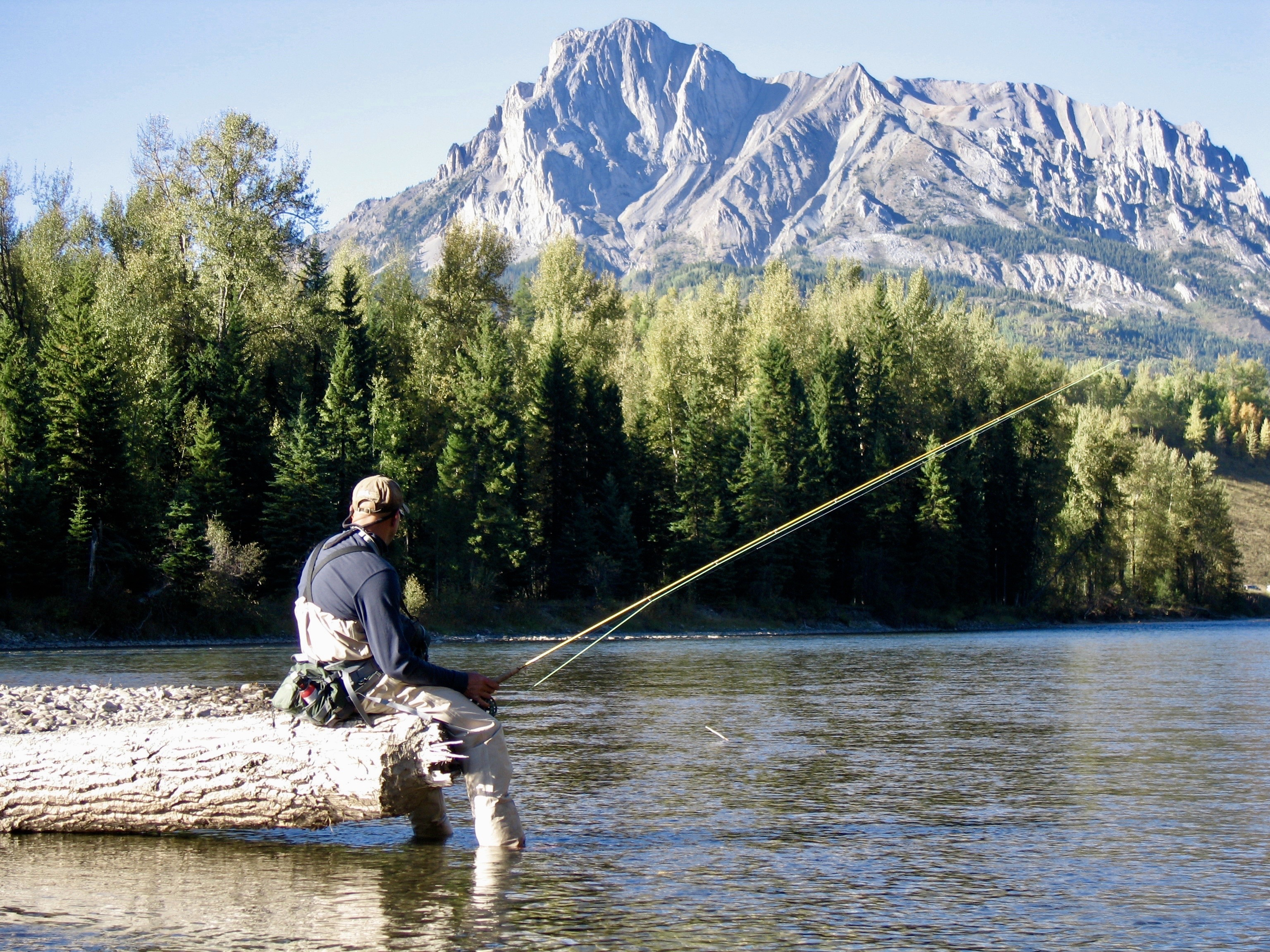 Trout school up your fly fishing game for 1 000 a day for Fly fishing games