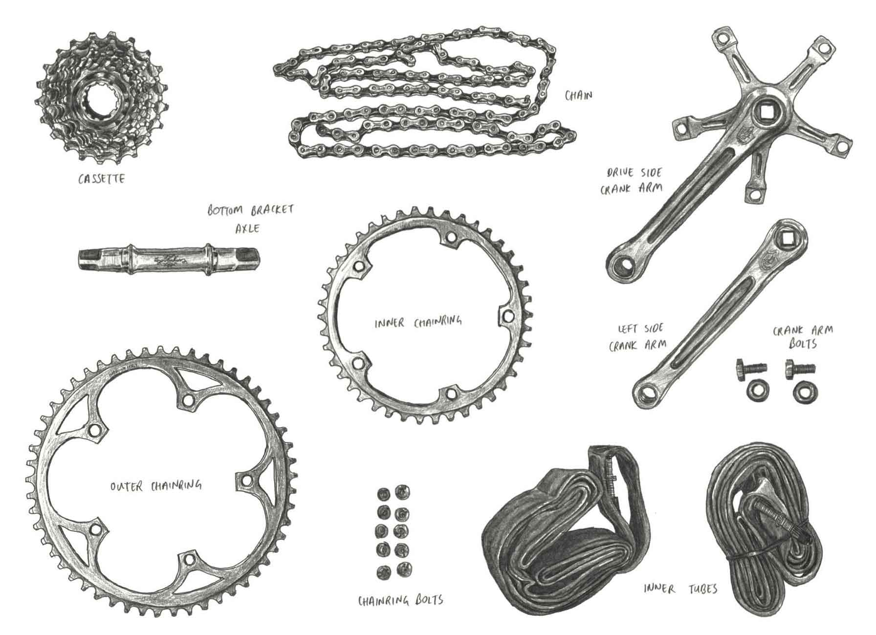 Anatomy of Cycling' Art Revives Retro Bike Culture | GearJunkie