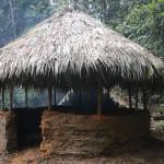 primitive technology round hut